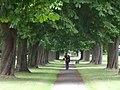 Path through Bush Hill Park - geograph.org.uk - 1402201.jpg
