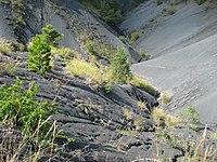Paysage de Terres noires à Sigottier.JPG