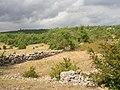 Paysage du Causse du Larzac.JPG