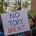 People's Vote March 2018-10-20 - No Tory Brexit.jpg