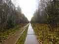 Permskiy r-n, Permskiy kray, Russia - panoramio (748).jpg