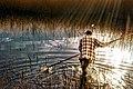 Petres lake 10.jpg
