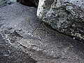 Petroglyphs from Ukhtasar Mountain 01.jpg