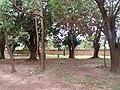 Photo taken by Rahul Ingle, May 2012 (7205622026).jpg