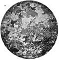 Photomicrograph granite PlateIX Fig1 MD Geological Survey Volume 2.jpg