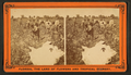 Picking cotton, from Robert N. Dennis collection of stereoscopic views 6.png