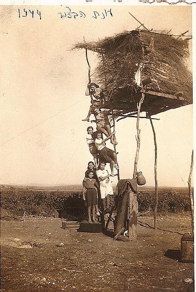 גבעת עדה סוכת שמירה בשדות המושבה