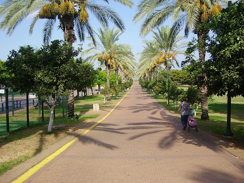 פארק רעננה
