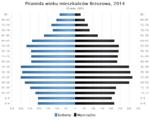 Piramida wieku Brzozow.png