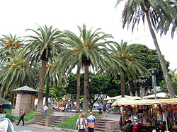 Place in Puerto de la Cruz.jpg