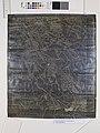 Planta de Parte da Cidade de São Paulo (Ipiranga, Moinho Velho, Moóca, Vila Ema,, São Caetano, São Bernardo, Sto. André), Acervo do Museu Paulista da USP.jpg