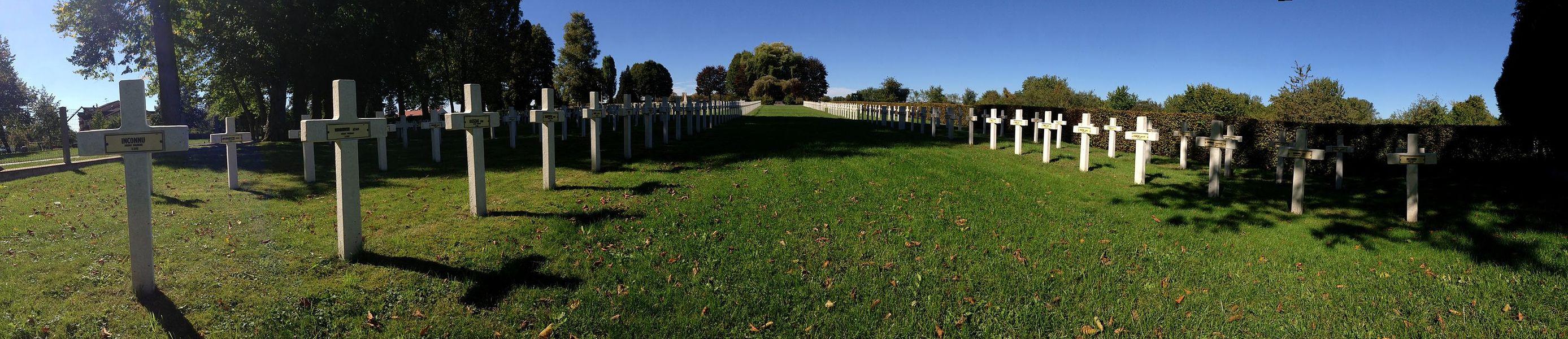 Polski Cmentarz Wojenny w Dieuze (Francja, Lotaryngia)