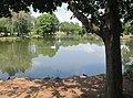 Pond in Yoctangee Park, Chillicothe Ohio - panoramio.jpg