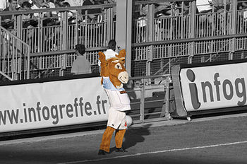 English: Pottoka, mascot of the French rugby u...
