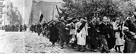 Powstanie warszawskie (21-223).jpg