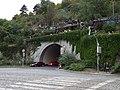 Průvod tramvají 2015, fotografové v Letenských sadech nad tunelem.jpg