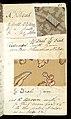 Printer's Sample Book, No. 19 Wood Colors Nov. 1882, 1882 (CH 18575281-25).jpg