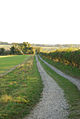 Private Road - Ranston Estate - geograph.org.uk - 588789.jpg