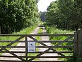 Private track into forest - geograph.org.uk - 462136.jpg