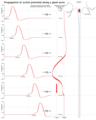 Propagation of action potential along a giant axon en.png