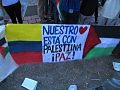 Protesta Pro-Palestina Santiago de Cali 2014 12.jpg