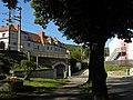 Purkersdorf - Baum mit Wanderwegmarkierungen.jpg