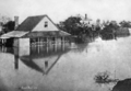 Queensland State Archives 518 North Quay Brisbane during the 1890 flood March 1890.png