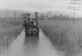 Queensland State Archives 6411 Flood Waters Near Cromarty Townsville Ayr Section showing gang trolley advancing through water c 1930.png