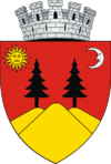Coat of arms of Fălticeni