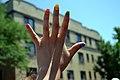 Rainbow Nails (5879541332).jpg