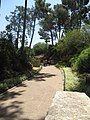 Ramat Hanadif Park 16.jpg