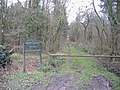 Red Lodge wood - geograph.org.uk - 314736.jpg