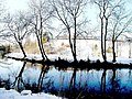 Reflections in winter - geograph.org.uk - 51654.jpg