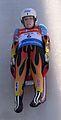 Rennrodelweltcup Altenberg 2015 (Martin Rulsch) 5157.jpg