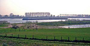 Spijk, Rijnwaarden - The Rhine near Spijk