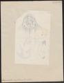Rhynchobatus ancylostomus - 1700-1880 - Print - Iconographia Zoologica - Special Collections University of Amsterdam - UBA01 IZ14200011.tif