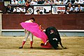 Rincón César, en una larga cordobesa, en Madrid. 7.6.94.jpg