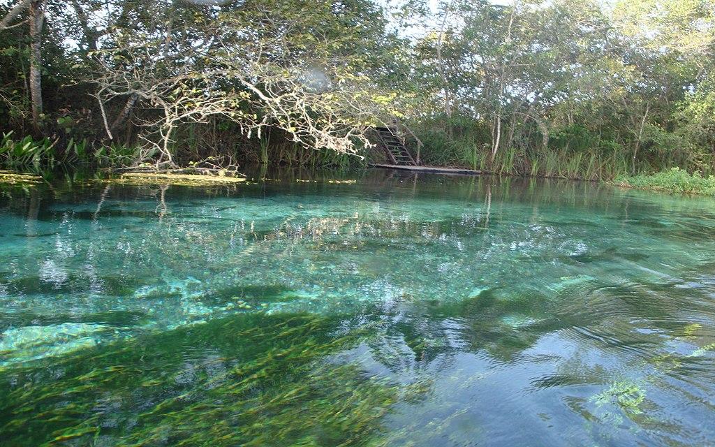 Rio Sucuri - Bonito (MS)