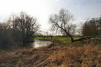 River Thet - River Thet at Brettenham