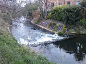 River Witham - River Witham at New Somerby, Grantham