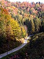 Road to top - panoramio.jpg