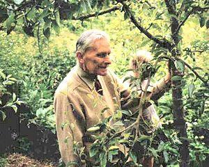 Forest gardening - Robert Hart, forest gardening pioneer