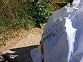 Rock-cornwall-england-tobefree-20150715-165207.jpg
