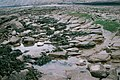 Rock pool - geograph.org.uk - 322069.jpg