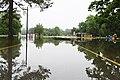 Roman Forest Flood Waters - 4-19-16 (26457109111).jpg