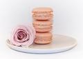 Rose macaron.tif