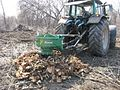Rotor stump grinder works in forest 2.JPG