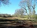 Rough pasture land - geograph.org.uk - 1756560.jpg