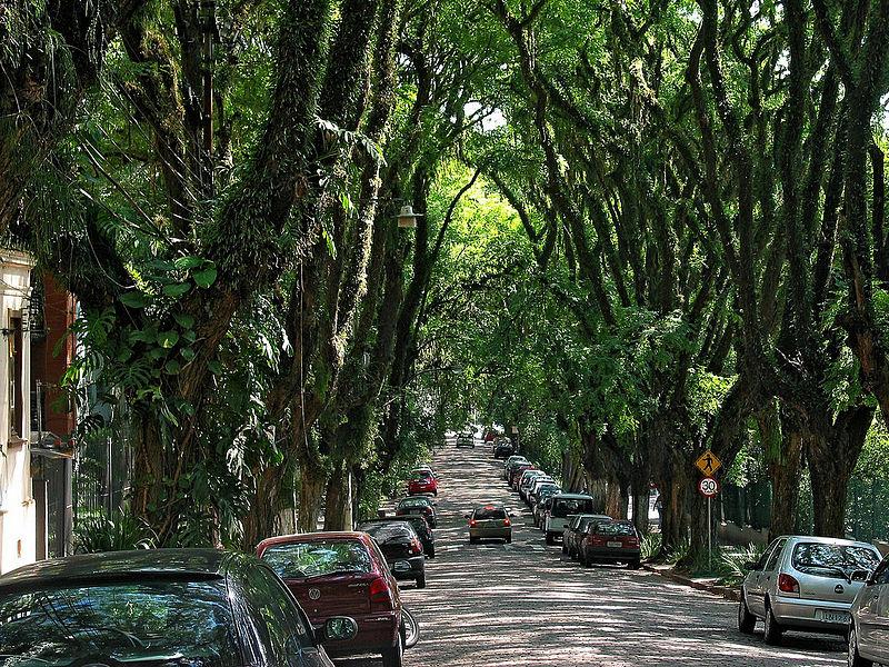 File:Rua Gonçalo de Carvalho.jpg