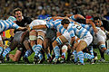 Rugby world cup 2011 NEW ZEALAND ARGENTINA (7309670524).jpg